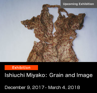 Ishiuchi Miyako: Grain and Image